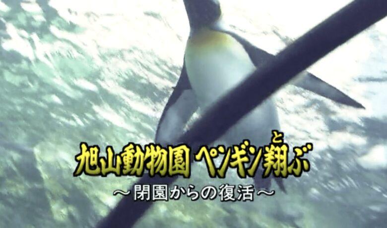 旭山動物園はレジャー施設経営としても地方創生としても理想的!!